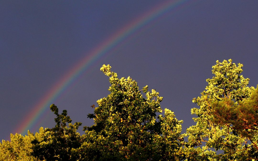 What Do You Do When You Can't Find a Rainbow?