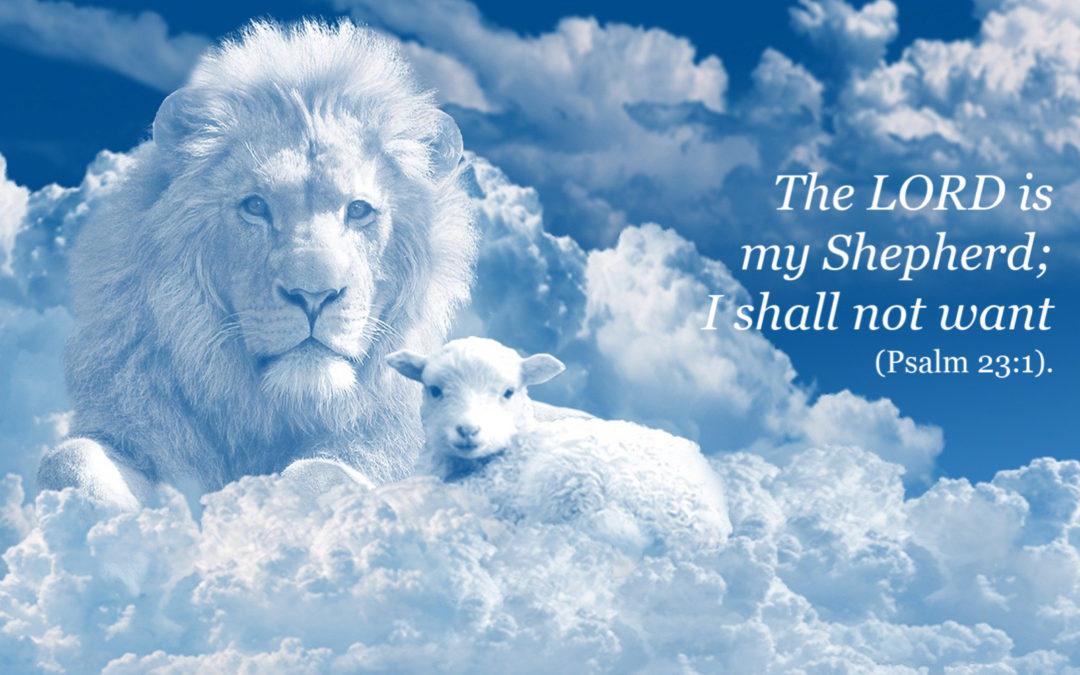 Praying our Grandchildren Know the Good Shepherd